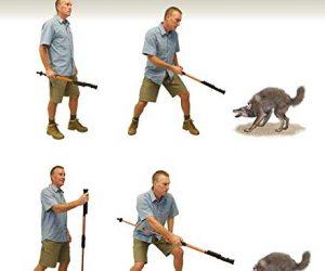 Hiking Stick Stun Gun